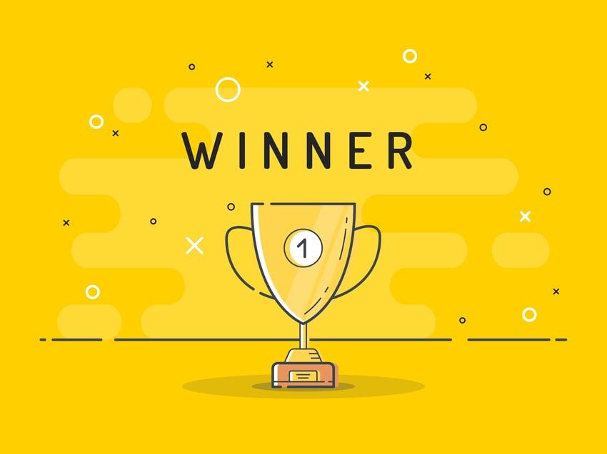 Moodle LMS Winner