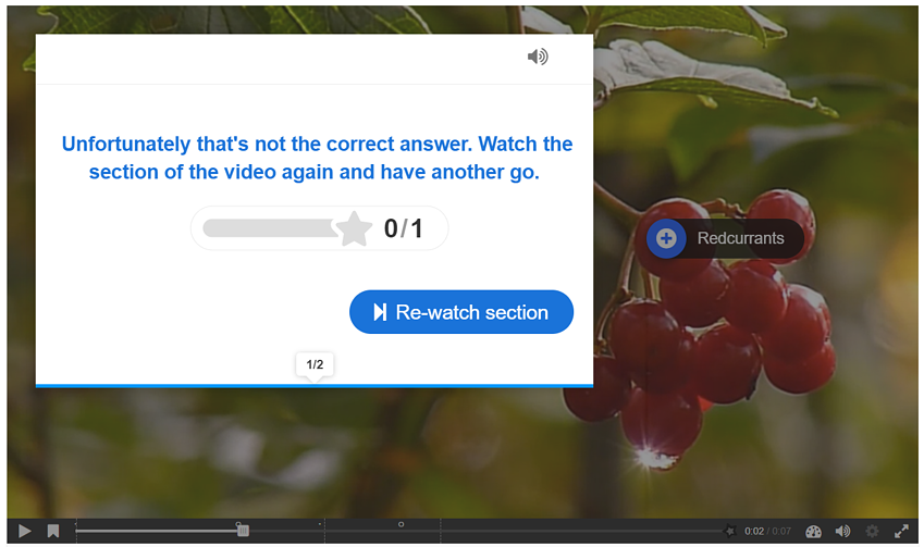 Breathe life into your content with Interactive Video